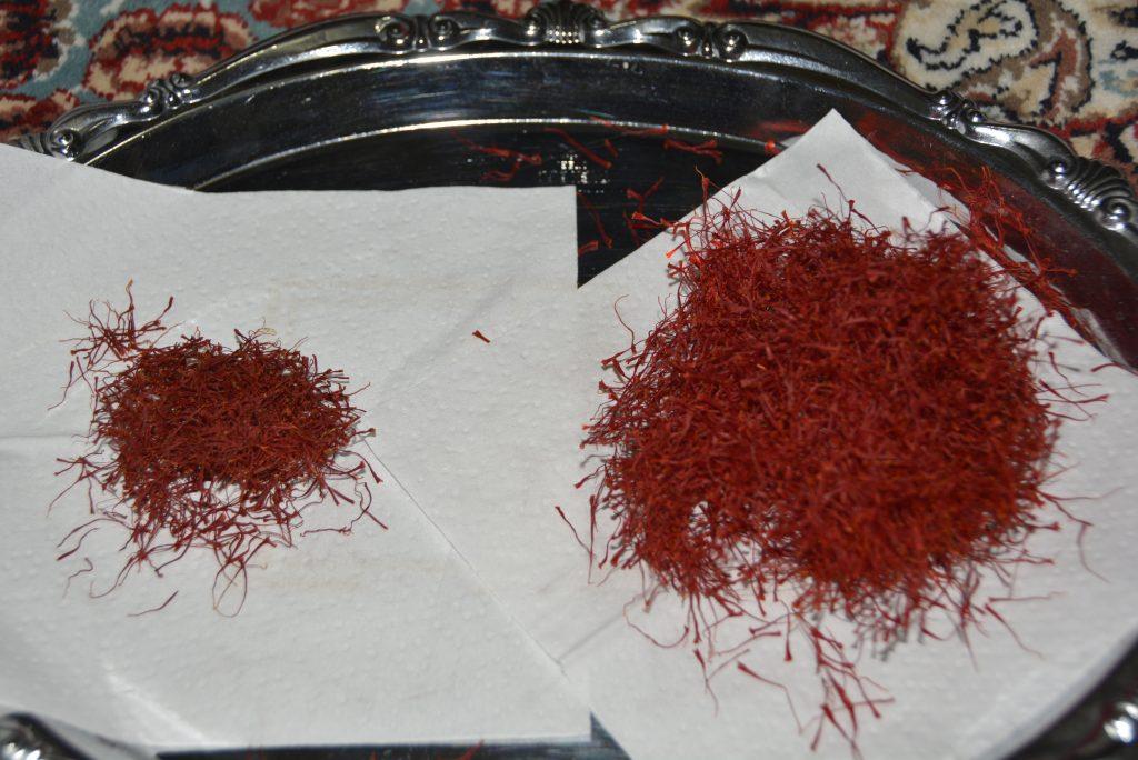 مقایسه زعفران خشک شده با دستگاه خشک کن و به روش سنتی