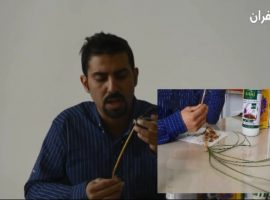 اهمیت تغذیه زعفران + آموزش ویدئویی